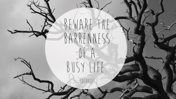 barreness-of-a-busy-life